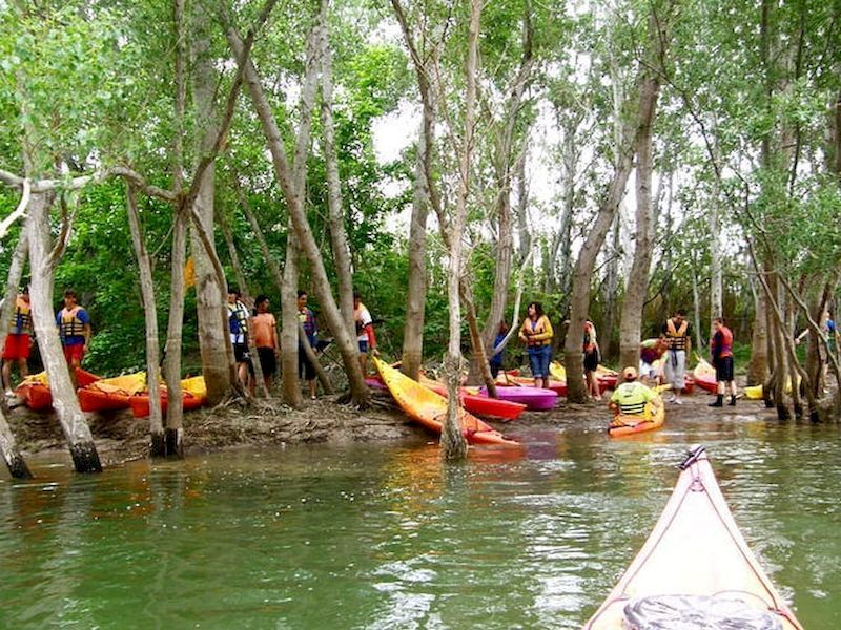 Kayak en la desembocadura del Ebro