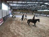 Lezioni di equitazione nei campi