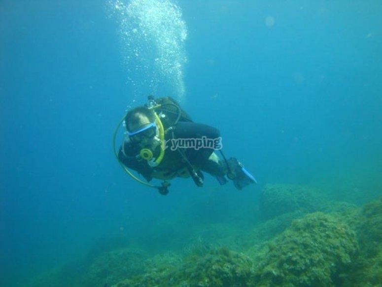 Disfruta del fondo marino
