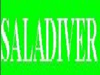 Saladiver Puenting