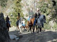 Horseback routes in Malaga