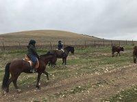 Paseo a caballo entre ganado