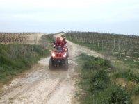 Acelerando entre los viñedos con el quad