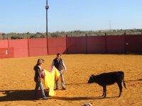 Capeando la vaquilla