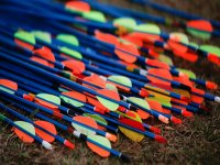las flechas preparadas