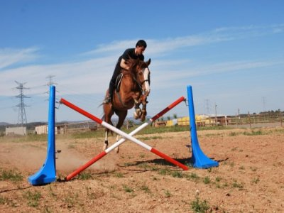 1 hour horse riding lesson in Poblet