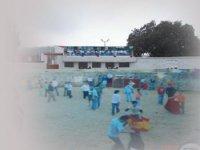 Fiestas camperas en nuestro complejo