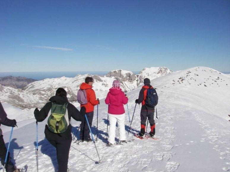 Viendo la nieve en las cumbres