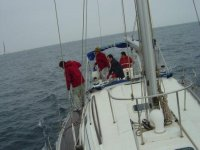 一个帆船赛徽标Aguinautic
