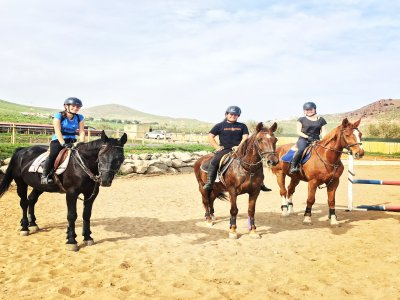 Horse riding lessons: 8 lesson package