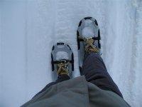 旅行雪鞋踏雪比斯开