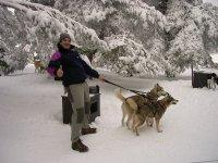与他的狗的musher徒步