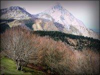 Pratica escursioni a Vizcaya