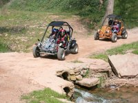 Enjoy with the buggies