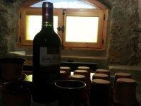 Visita a bodegas en Vizcaya