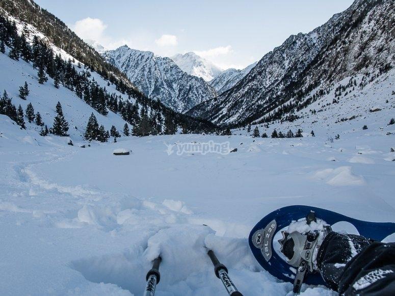 Raquetas de nieve y bastones