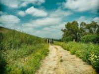 Disfruta de los caminos de Cadiz