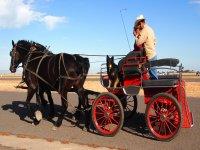 Carro de caballos en un dia soleado