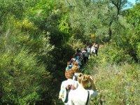 Rutas para disfrutar flora y fauna