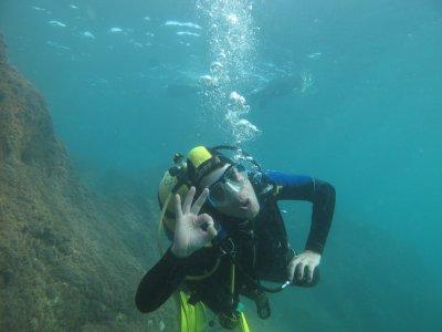 Curso de buceo Padi Scuba Diver