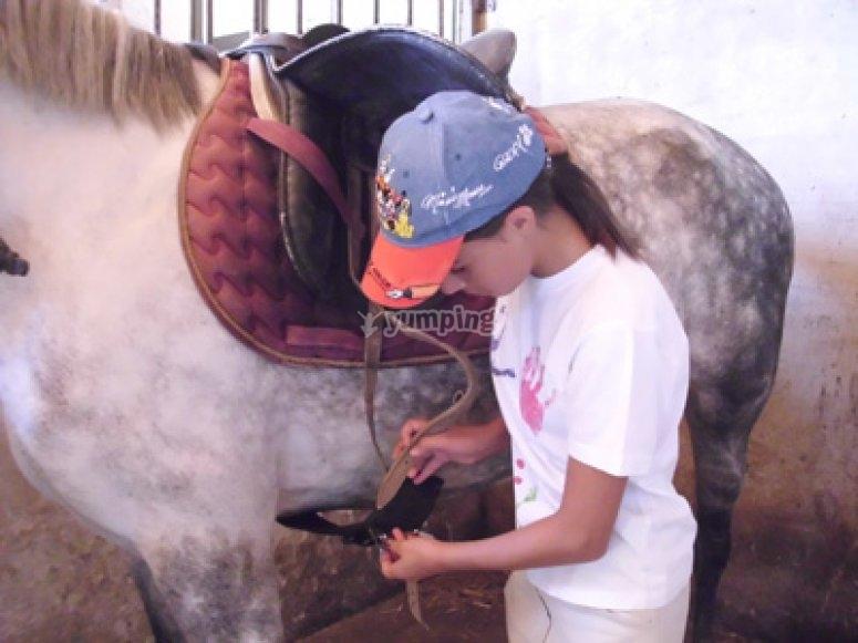 Ensillando al caballo