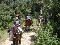 Peques paseando con los caballos