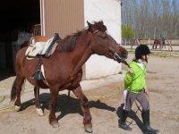 sacando al caballo