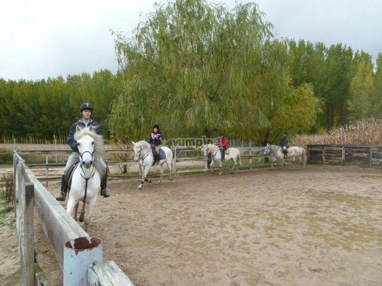 Practicando la equitación en el picadero