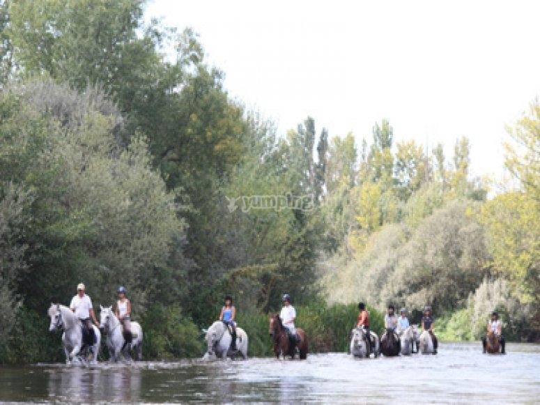 Raffreddare i cavalli nel fiume
