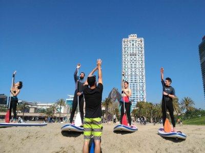 WaveAddict Paddle Surf