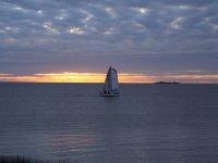 在日落帆船帆船党双体帆船