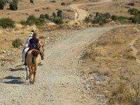 Ruta asturiana
