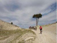 Tour Jaen by bike