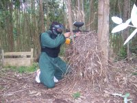 Paintball en el bosque