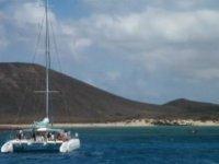 前往富埃特文图拉岛和兰萨罗特岛的游览