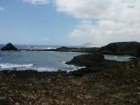 与Isla de Lobos