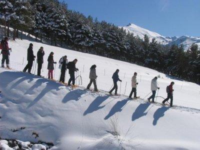 Mamut Sierra Nevada Raquetas de Nieve
