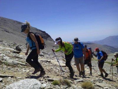 Mamut Sierra Nevada Senderismo