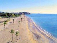 Campamento de ingles en Alicante