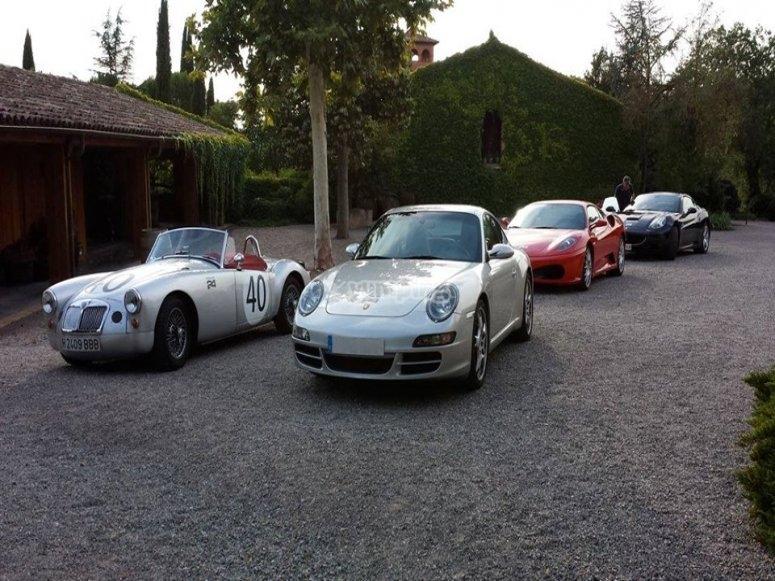 Porsche y los demas deportivos