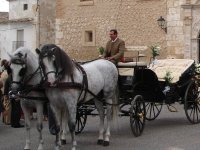 Wedding in Casa Carmelo and a carriage