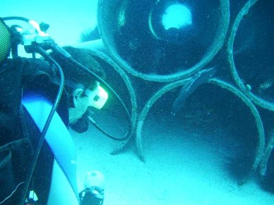 Gran Canaria Diving