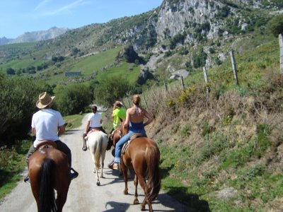 Horse Riding in Cantabrian Mountains + Lesson