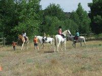 Aprendiendo sobre los caballos al aire libre