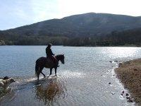 Pisando agua a caballo
