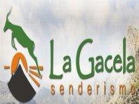 La Gacela