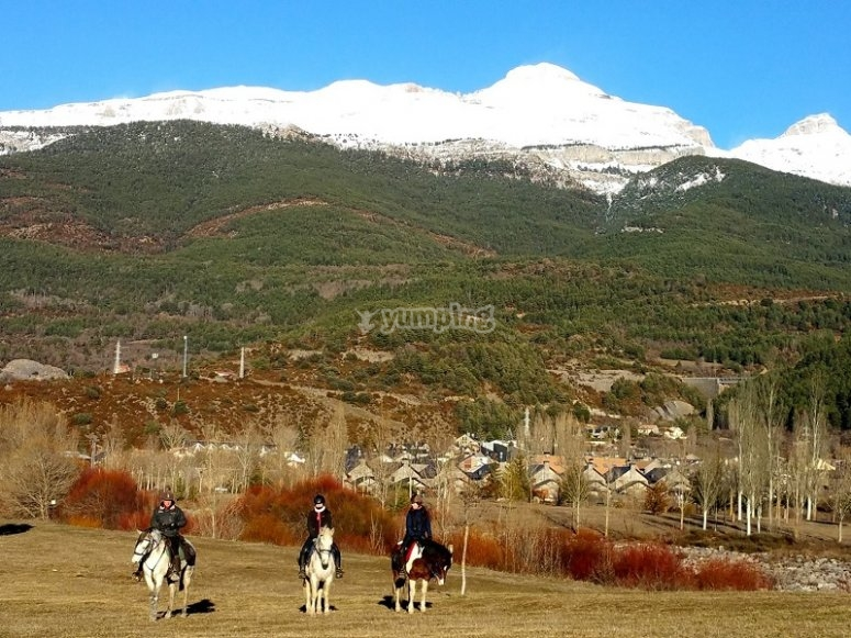 Caballos y Pirineos de fondo