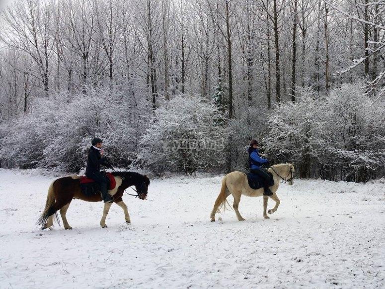 Ruta a caballo por la nieve