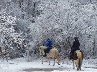 Ruta a caballo en Jaca 1 hora y 30 minutos