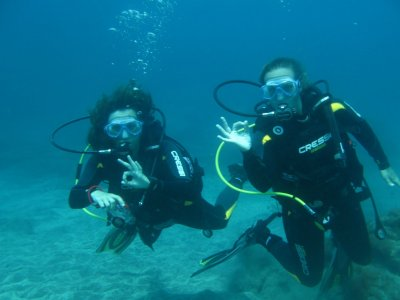 Diving initiation programme PADI DSD, Tenerife